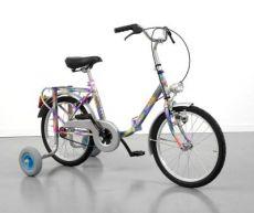 Bicicletta a Quattro Ruote Classica